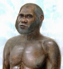 Reproducción del fósil