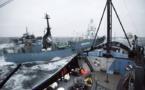 Balleneros japoneses anuncian acuerdo con ONG Sea Shepherd