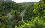 Alemania ayuda a Centroamérica a detener la destrucción de sus bosques