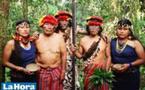 Turismo para salvar la selva