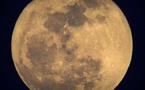 Estudio: La Luna posee mucha más agua de lo que se pensaba