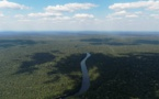 Temer frena un polémico decreto sobre la Amazonía tras críticas