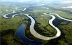 El Pantanal de Brasil, un paraíso escondido de fauna salvaje