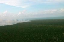 Gobierno de Nicaragua anuncia que acabó incendio en reserva biológica