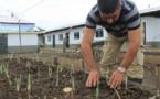 ONU alerta que 55% de las FARC abandonó zonas de reincorporación