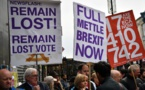 """Grupos anti """"Brexit"""" lanzan campaña por """"Voto del Pueblo"""""""