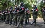 Negociación entre Gobierno colombiano y el ELN se reanudará en Cuba