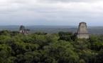 Mil años después, la tala de los mayas sigue afectando el suelo